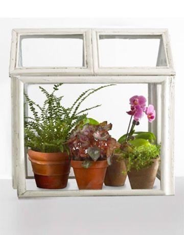декорування рослинами інтер`єр хендмейд майстер-клас